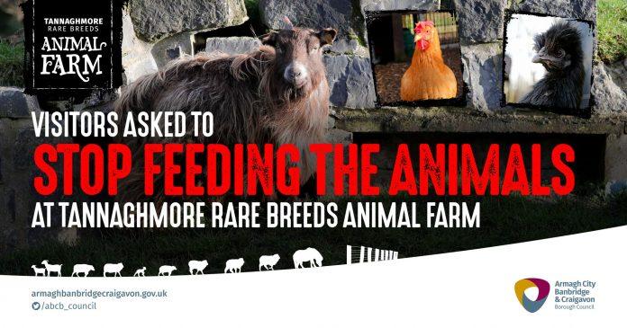 Stop Feeding the Animals
