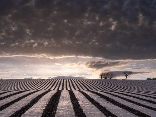Farming Innovation
